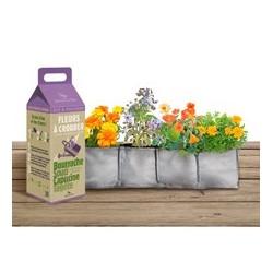 Kit à pousser® FLEURS A CROQUER pour salades d'été