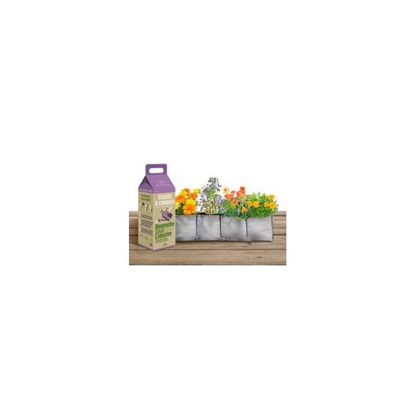 kit pousser fleurs a croquer pour salades d 39 t. Black Bedroom Furniture Sets. Home Design Ideas
