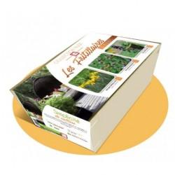 Collection NUDE - Les fritillares