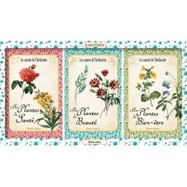 Les carnets de l'herboriste