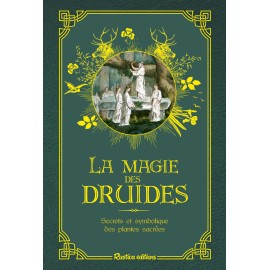 La magie des druides