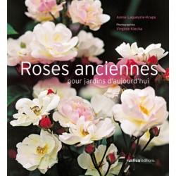 Roses anciennes pour jardins d'aujourd'hui