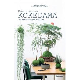 Mon atelier Kokedama